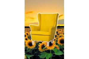 Jaunums! Krāsainie Werina krēsli