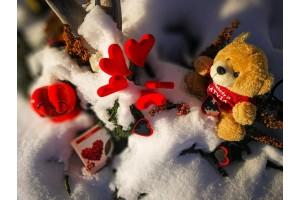 Mīlestības dienu gaidot